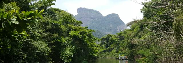 bws pantanal carioca crisstilben cris pelo mundo capa